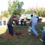 Tree Dedication Ceremony