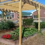 Summer Garden Program