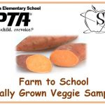 PTA-SHIP Locally Grown Sweet Potato Sampling
