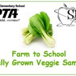 PTA-SHIP Locally Grown Bok Choy Sampling!