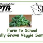 PTA-SHIP Locally Grown Kale Sampling