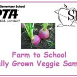 PTA-SHIP Locally Grown Turnip Sampling!